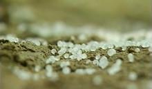 2008年上映『健康な土 ― 過剰施肥のもたらすもの ―』
