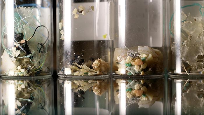 海 ― 消えたプラスチックの謎